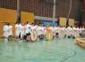 olympische_spiele_2013_1