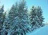 Schneesportwoche_2012_07